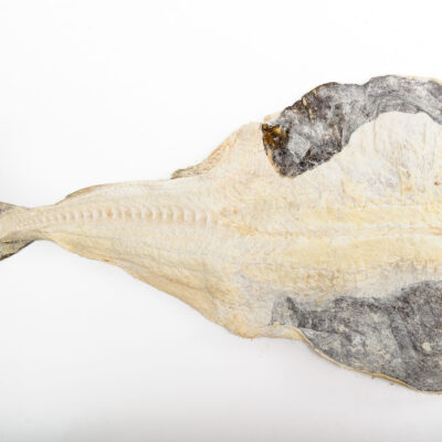 Codfish Bacalhau Super Especial